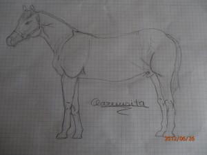 Dibujos a lapiz de caballos (4)