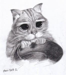 9 Bonitos dibujos a lápiz gatos (3)